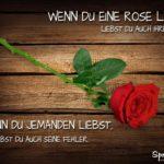 Liebe Sprüche - Vergleich mit Rose und Dornen