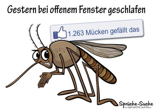 Lustige Sprüche Für Facebook Mücke Gestochen