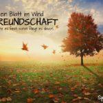 Herbsttag - Freundschaft - Spruch zum Nachdenken - Blatt im Wind