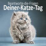 Beantworte-die-Fragen-Deiner-Katze-Tag