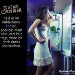 Käse schimmelt - Lustiger Spruch am Kühlschrank