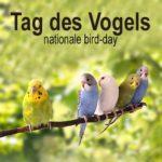 Tag des Vogels