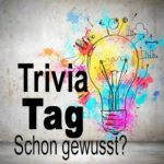 Trivia-Tag