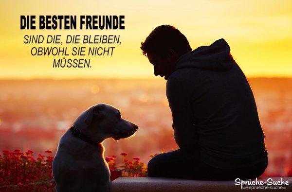 Die besten Freunde Hund und Mensch