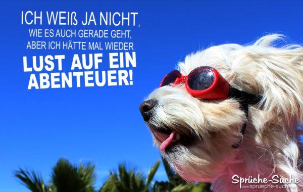 Lust auf ein Abenteuer - Spruch mit Hund