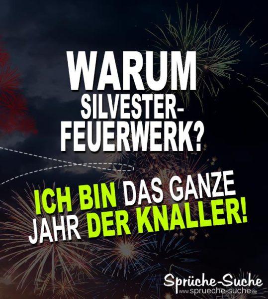 Warum Silvester-Feuerwerk Sprüche