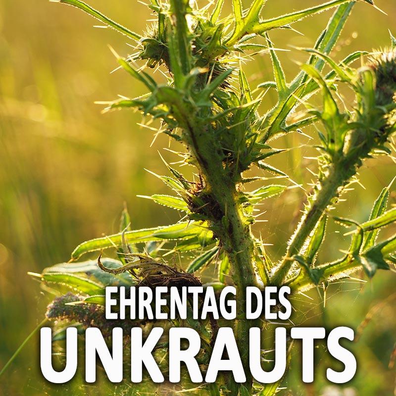 Ehrentag des Unkrauts