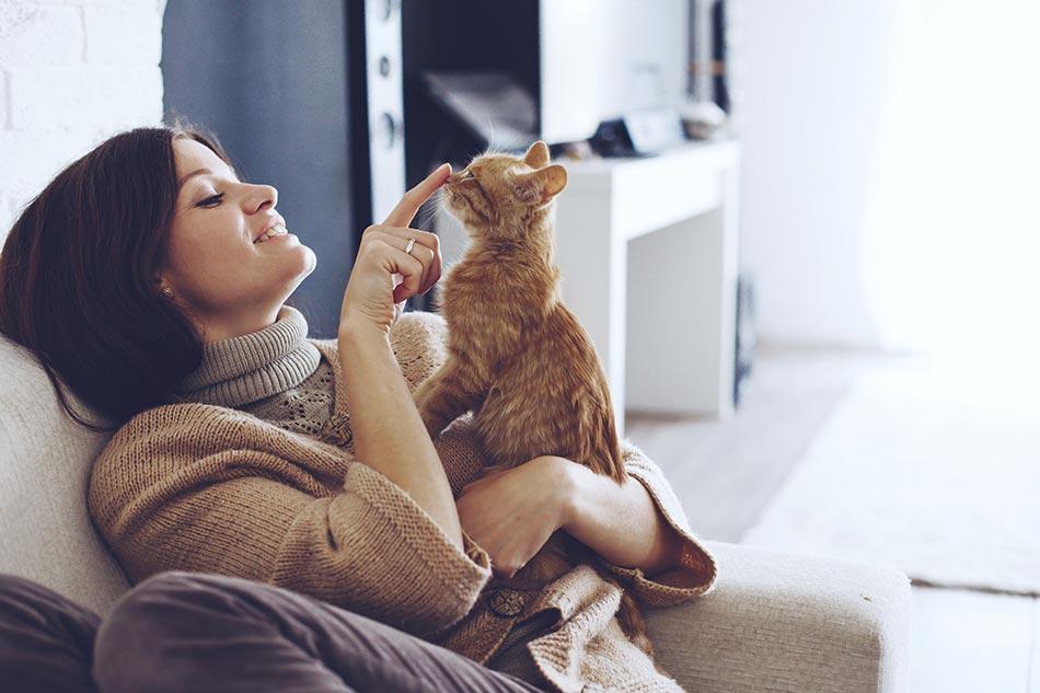 Liebe deine Katze