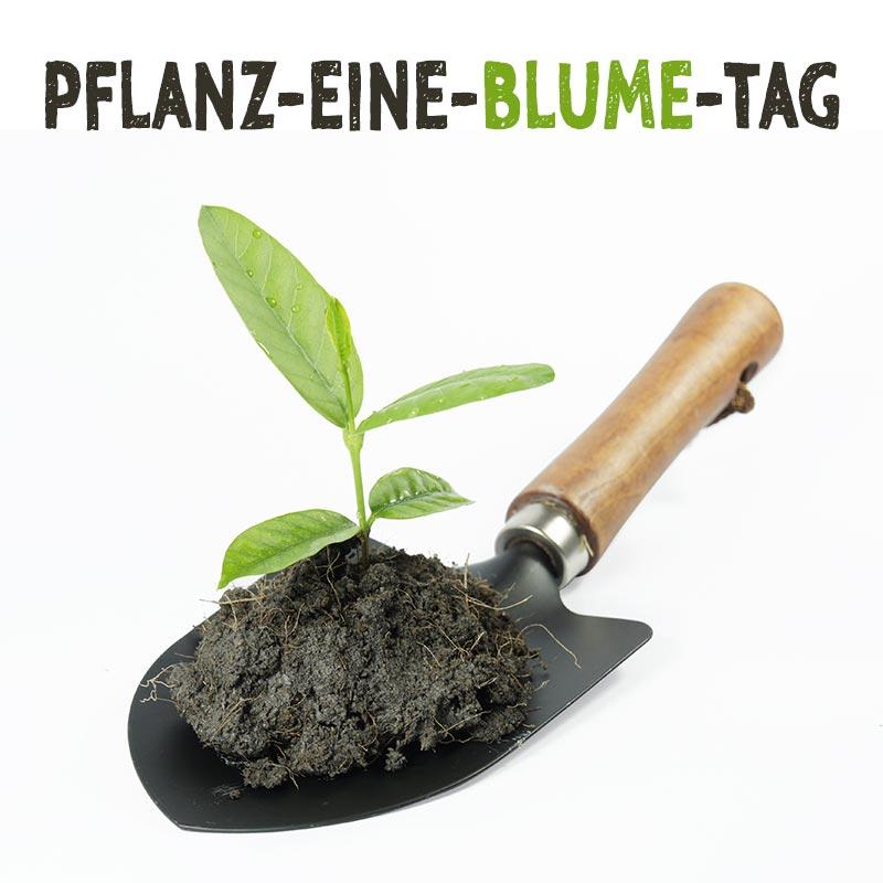 Pflanz-eine-Blume-Tag