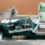 Welt-Sterilisationstag