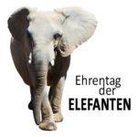 Ehrentag der Elefanten