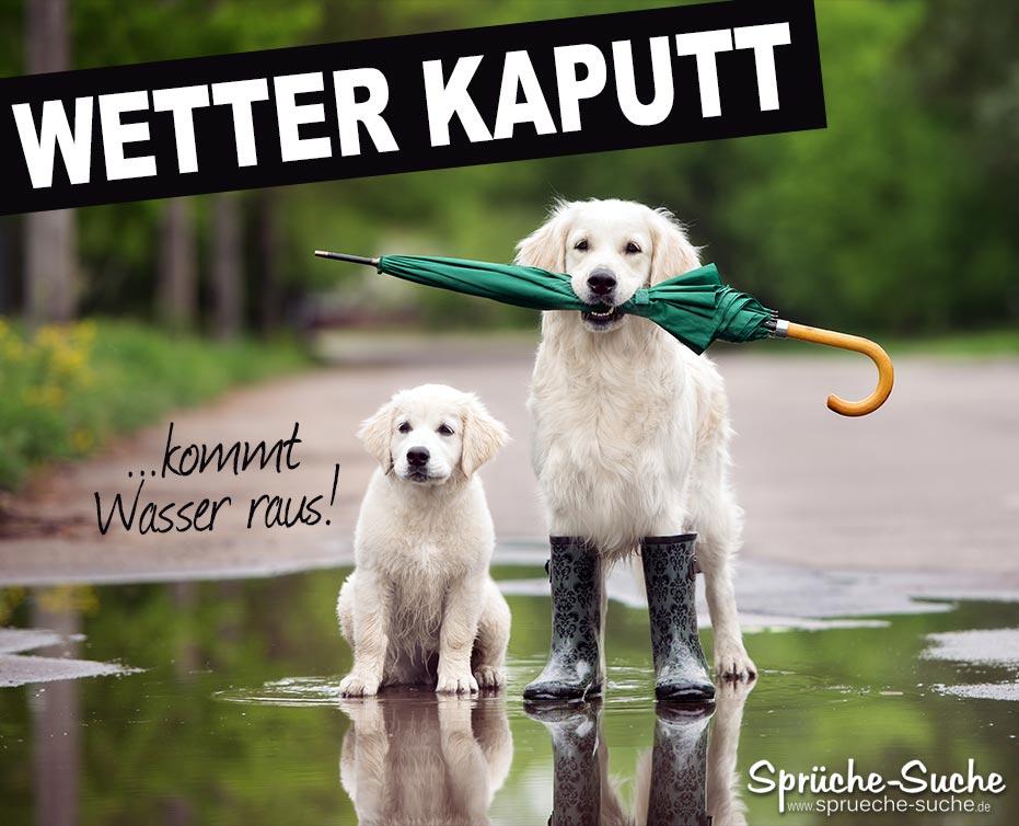 wetter sprüche Schlechtes Wetter Spruch mit Hunden   Sprüche Suche wetter sprüche