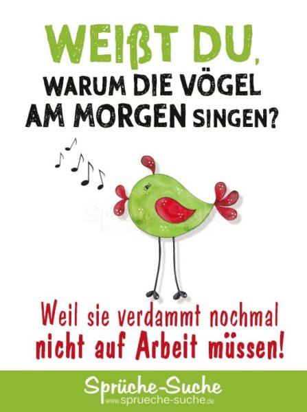 Lustiger Spruch - Warum die Vögel am Morgen singen