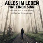 Mann im vernebelten Wald - Motivation Sprüche - Abstand gewinnen