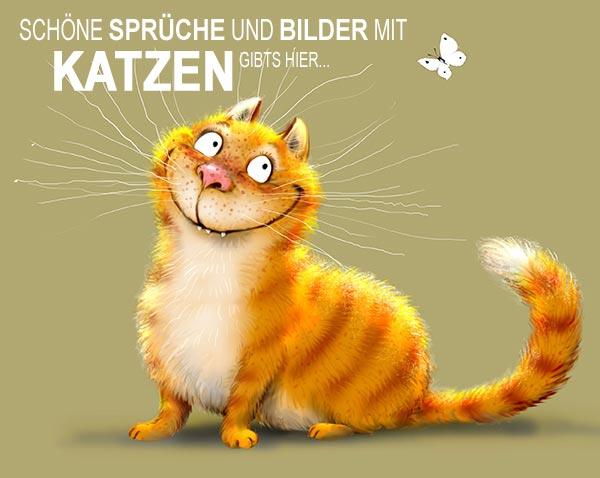 Schöne Sprüche und Bilder mit Katzen