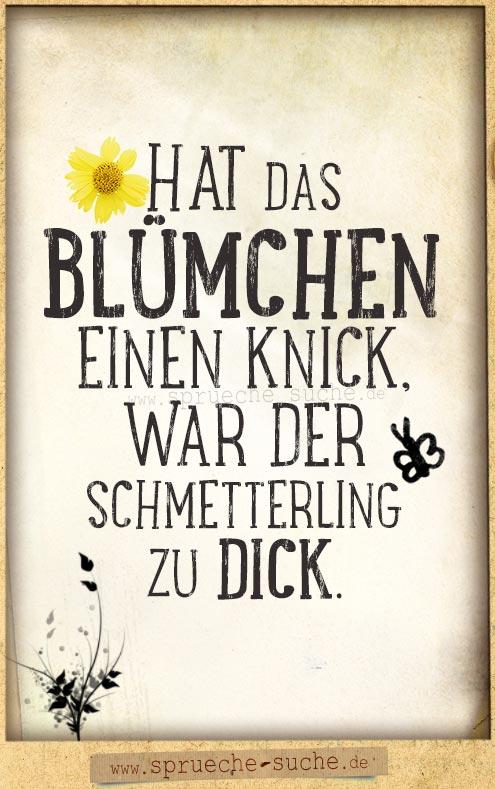 Zu Dick