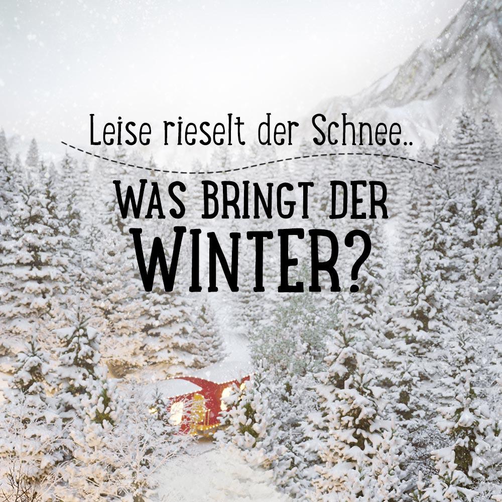 Leise rieselt der Schnee - Was bringt der Winter