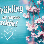 Frühling Sprüche Statusbild