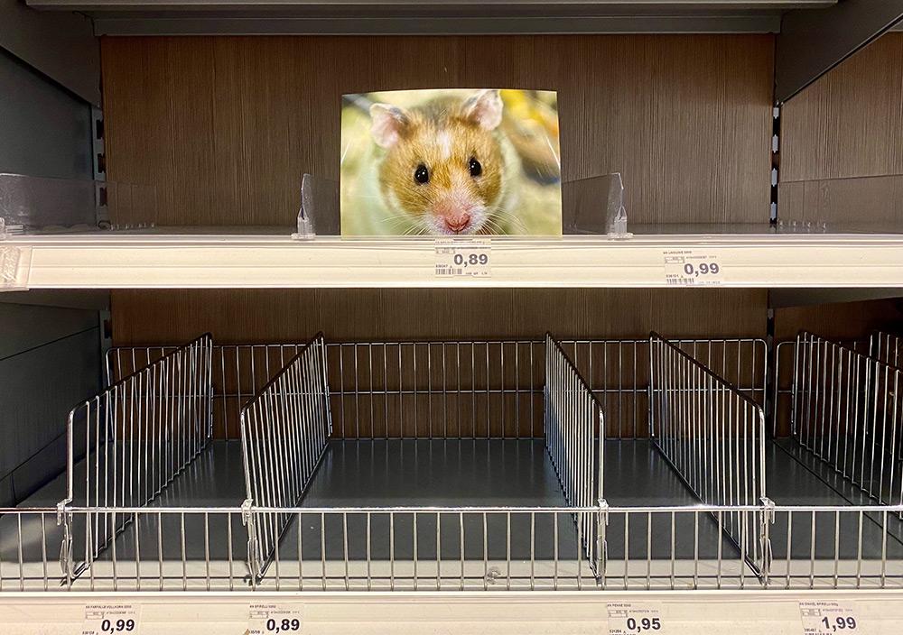 Hamsterkäufe im Supermarkt