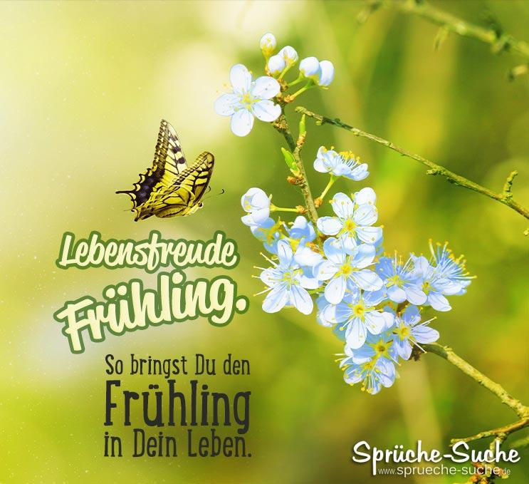 Lebensfreude Frühling. So bringst Du den Frühling in Dein Leben