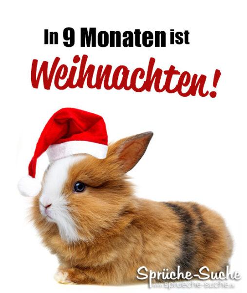 Spruch Hase Weihnachten