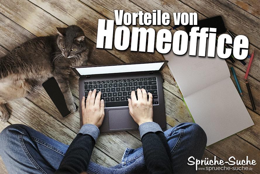Katze auf dem Schreibtisch - Die Vorteile von Homeoffice