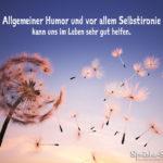 Pusteblume - Humor und Selbstironie - Sprüche fürs Leben