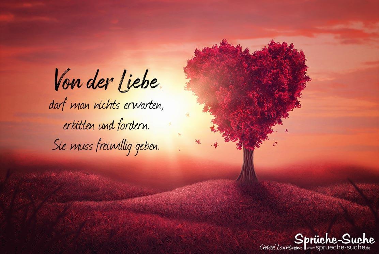 Spruch über die Liebe - Sprüche-Suche