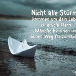 Spruch zum Nachdenken - Nicht alle Stürme kommen um dein Leben zu erschüttern.