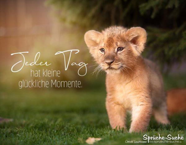 glückliche Momente - Spruch mit Baby-Löwen